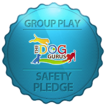 Group Play - force free safety pledge